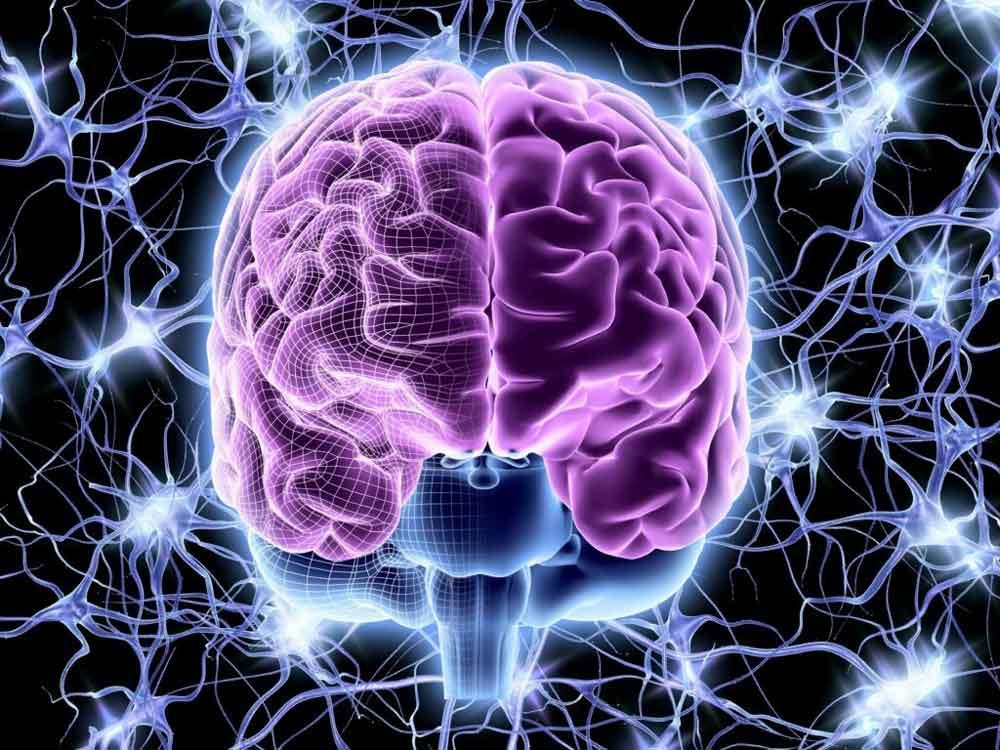 تشنج و صرع ناشی از مشکلات مغز است