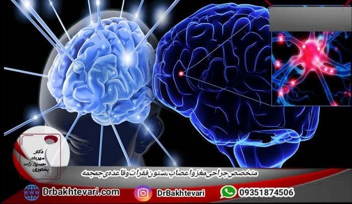 بیماری های ژنتیک مغزی و نخاعی