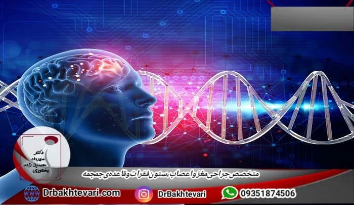 بیماری های ژنتیک مغز و اعصاب چیست؟